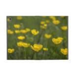 Yellow Buttercup Flowers iPad Mini Case
