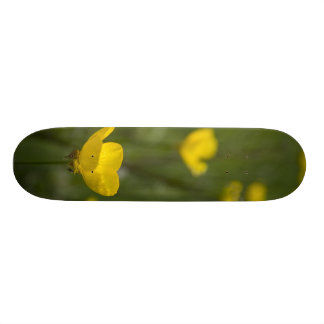 Yellow Buttercup Flowers Skate Boards
