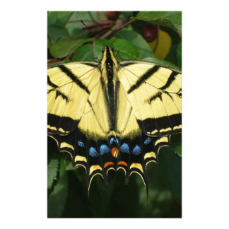Yellow Butterfly Customized Stationery