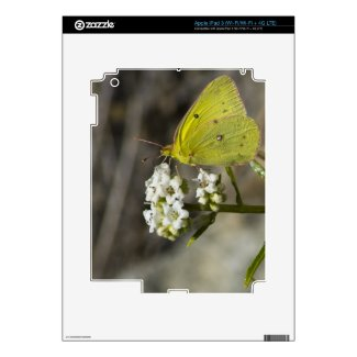 Yellow Butterfly Decals For Ipad 3