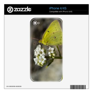 Yellow Butterfly Decals For The Iphone 4s