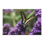 "Yellow Butterfly I, quote - LARGE, 36"" x 24"" Stretched Canvas Prints"