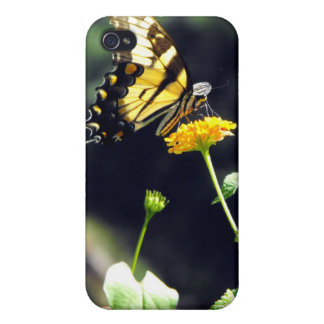 Yellow Butterfly  iPhone 4/4S Case