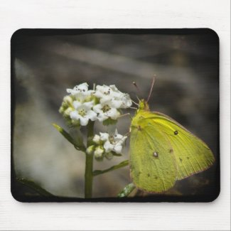 Yellow Butterfly Mousepads