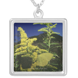 Yellow butterfly on flower, camouflage square pendant necklace