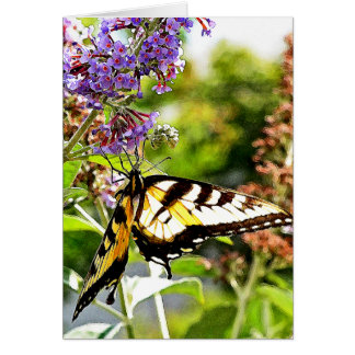 Yellow Butterfly on Lavender Butterfly Bush Card