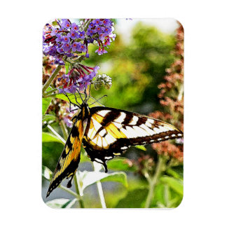 Yellow Butterfly on Lavender Butterfly Bush Magnet