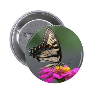Yellow Butterfly on Pink Zinnia Flower Pinback Button