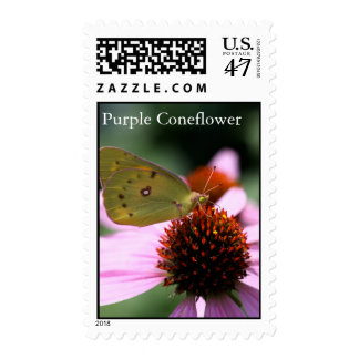 Yellow Butterfly on Purple Coneflower Postage Stamp