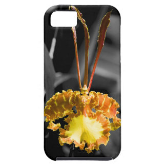Yellow Butterfly Orchid iPhone 5 Covers