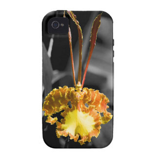 Yellow Butterfly Orchid Vibe iPhone 4 Covers