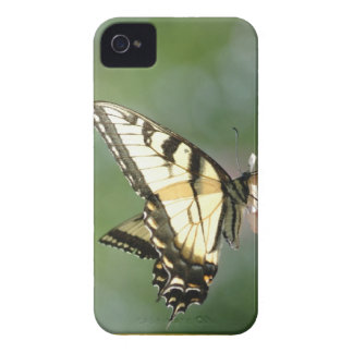 Yellow Butterfly Phone Case