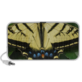 Yellow Butterfly Portable Speakers