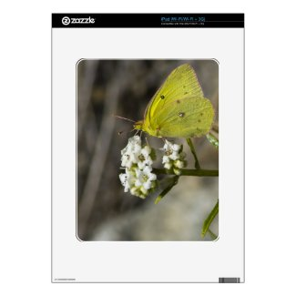 Yellow Butterfly Skins For The Ipad
