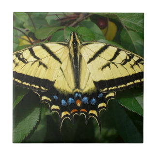 Yellow Butterfly Tiles