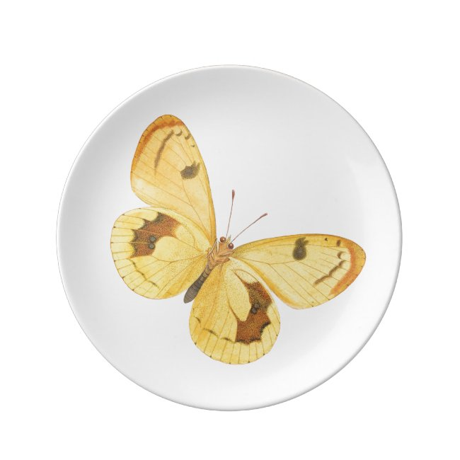 Yellow Butterfly Vintage Fine Art Porcelain Plate