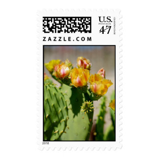 Yellow Cactus Bloom Postage Stamp