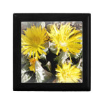 Yellow Cactus Blooming Flowers Gift Boxes