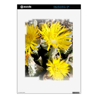 Yellow Cactus Blooming Flowers Skins For iPad 2