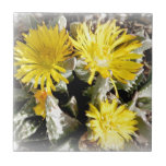 Yellow Cactus Blooming Flowers Tiles