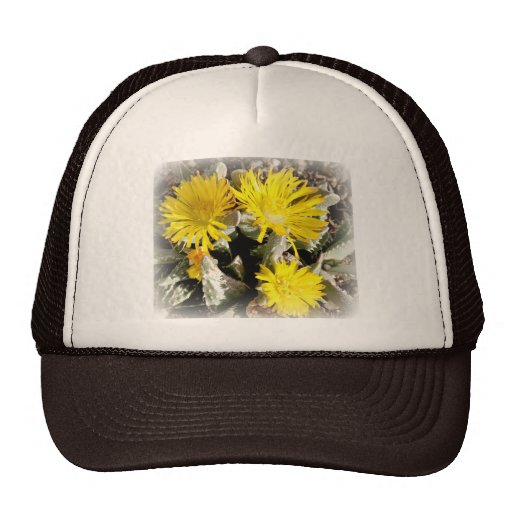 Yellow Cactus Blooming Flowers Trucker Hat
