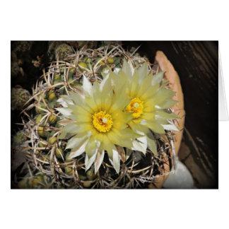 Yellow Cactus Blooms Card