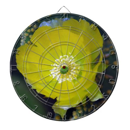 Yellow cactus flower and meaning dart boards