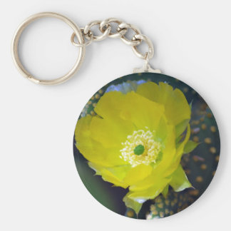 Yellow cactus flower and meaning key chains