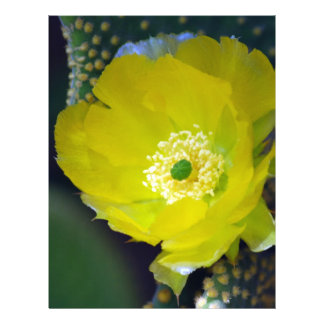 Yellow cactus flower and meaning custom letterhead