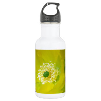Yellow cactus flower and meaning stainless steel water bottle