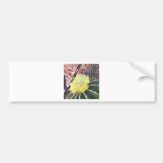 Yellow cactus flower bumper sticker