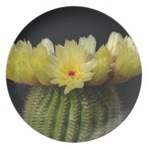Yellow Cactus Flower Dinner Plate