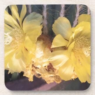 Yellow cactus flower drink coaster