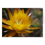 Yellow cactus flower greeting cards