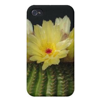 Yellow Cactus Flower iPhone 4/4S Case