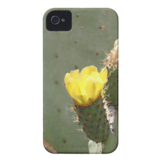 Yellow Cactus Flower iPhone 4 Covers
