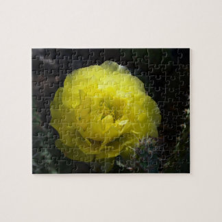 Yellow Cactus Flower puzzle