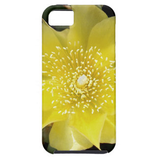 Yellow Cactus Prickly Pear Flower iPhone 5 Case