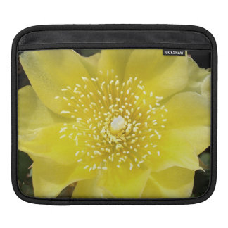Yellow Cactus Prickly Pear Flower Sleeve For iPads