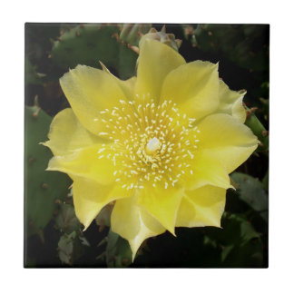 Yellow Cactus Prickly Pear Flower Tile