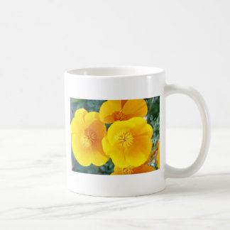 yellow California poppies in full bloom flowers Classic White Coffee Mug