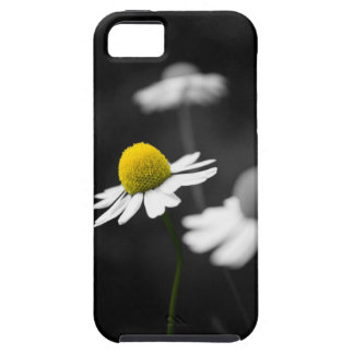 Yellow Camomile iPhone 5 Case