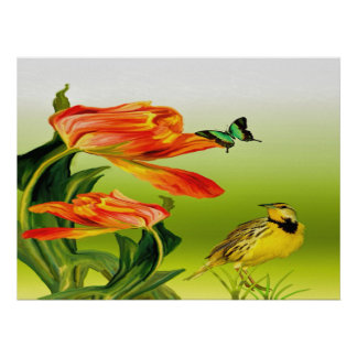 Yellow Canarie name Holly Poster