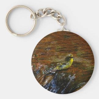 Yellow Canary bird bathing Keychain