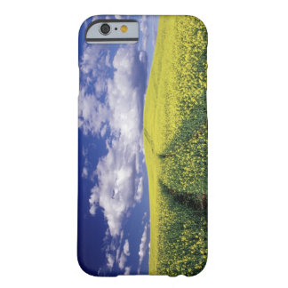 Yellow canola in Whitman County Washington state Barely There iPhone 6 Case