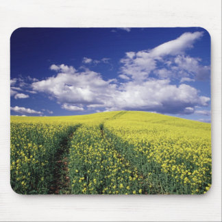Yellow canola in Whitman County Washington state Mouse Pad