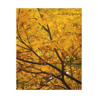 Yellow Canopy Canvas Print
