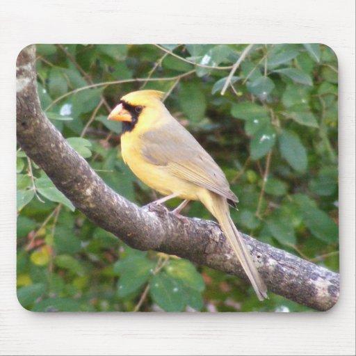 Yellow Cardinal Mouse Pad