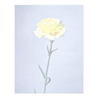 Yellow carnation  flowers letterhead