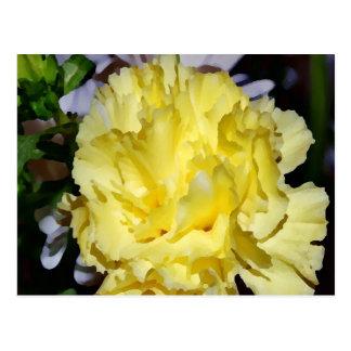Yellow Carnation-PhotoMagic Postcard